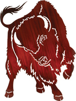 buffalo wall art hanging