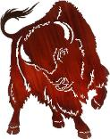Native American Indian Themes / Buffalo